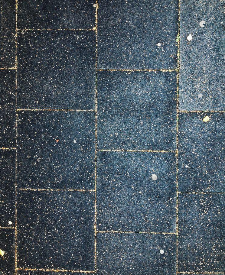 Pflaster grid seed landing zone